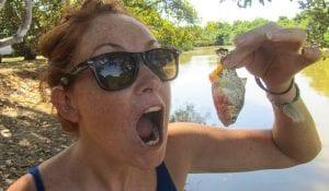 Piranha Anyone?