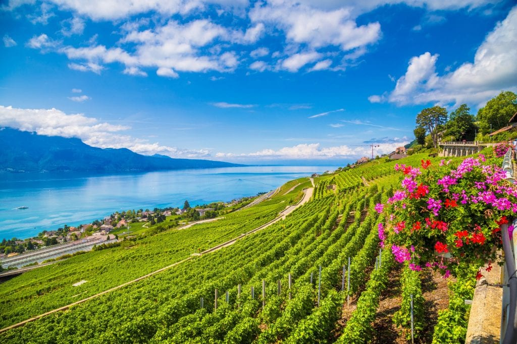 Cruise French Countryside with a Master of Wine