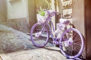 Cycling Provence Alpilles