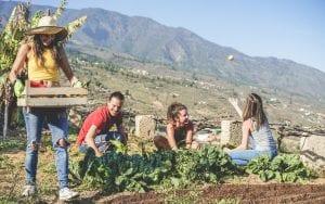 Italian Vegan Food Trails