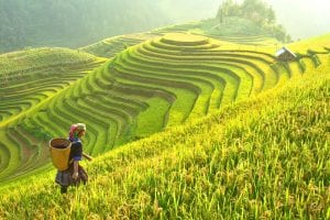 Classic Vietnam with Sapa