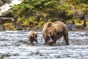 Unforgettable Alaska