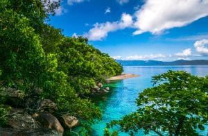 Palm Cove? More Like Paradise Cove!